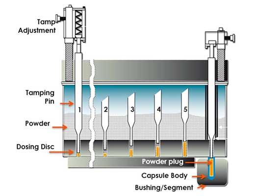 Hard gelatin capsules - Tamping/ Dosing disk filling principle